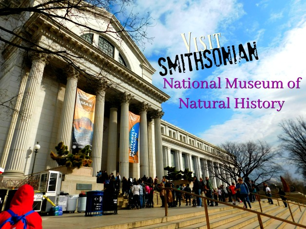 Visit Smithsonian | National Museum of Natural History