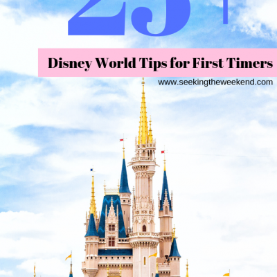 Walt Disney World Tips For First Timers (To Make Your Experience More Enjoyable)